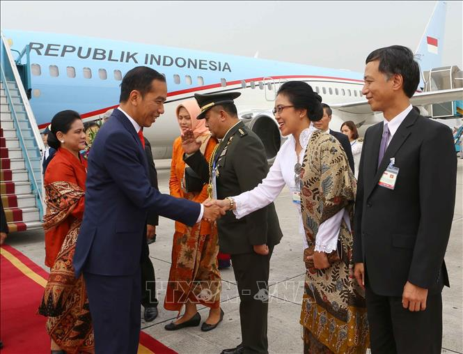 Photo: Representatives of Indonesian Embassy in Vietnam welcomes President Joko Widodo and his spouse at Noi Bai International Airport. VNA Photo: Doãn Tấn
