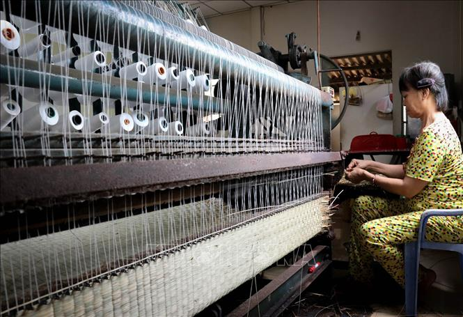 Photo: Many households in Long Dinh village transformed the mat weaving craft by using an automatic weaving loom, increasing production rate. VNA Photo: Nam Thái