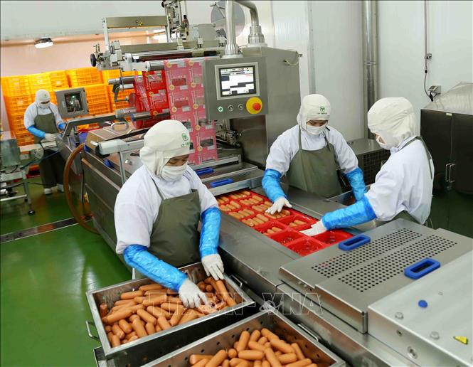 Công ty Cổ phần chăn nuôi C.P Việt Nam cung cấp 1.800 tấn sản phẩm ...