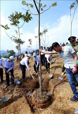 Photo: Delegates plant trees after the launching ceremony of Tree Planting Festival. VNA Photo: Vũ Sinh