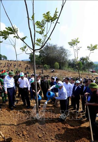 Photo: Party General Secretary, President Nguyen Phu Trong waters a tree. VNA Photo: Vũ Sinh