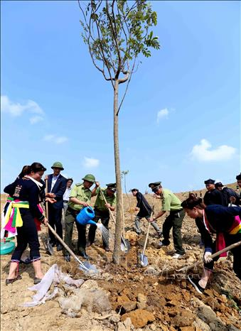 Photo: Forest rangers and local people join the tree planting festival. VNA Photo: Vũ Sinh