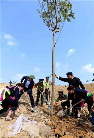 Photo: Forest rangers and local people in Yen Bai join the Tree planting festival. VNA Photo: Vũ Sinh