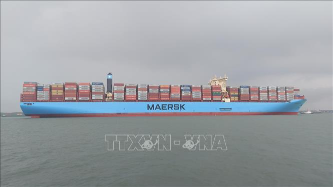 Photo: The Margrethe Maersk docks at Cai Mep International Terminal (CMIT) in Phu My township, the southern province of Ba Ria - Vung Tau. VNA Photo: Ngọc Sơn